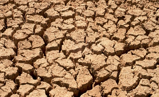 CSIRO_ScienceImage_607_Effects_of_Drought_on_the_Soil